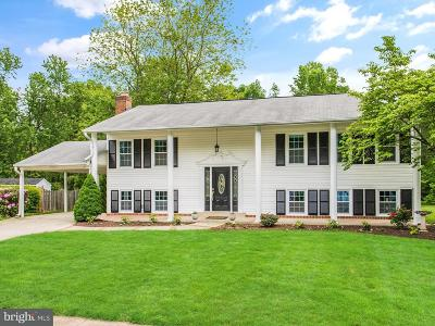 Centreville Single Family Home For Sale: 15001 Olddale Road