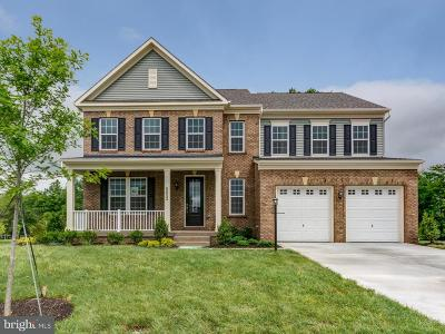 Manassas Single Family Home For Sale: 8852 Old Dominion Hunt Circle