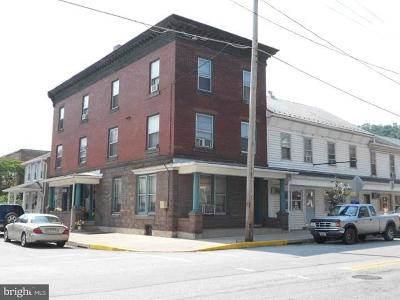Perry County Multi Family Home For Sale: 301-309 Market Street