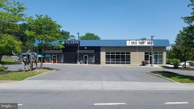 Stephens City Commercial Lease For Lease: 181 Warrior Drive