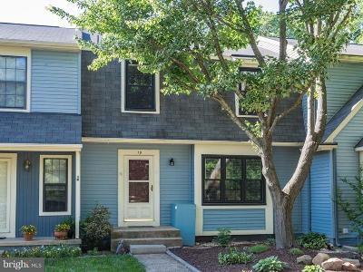 Loudoun County Townhouse For Sale: 19 Berkeley Court S