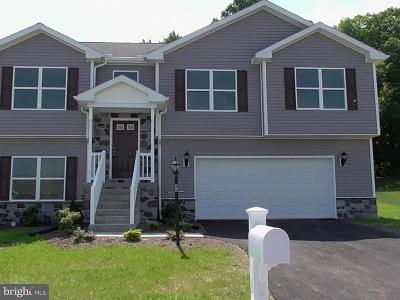 York Haven Single Family Home For Sale: 90 Champions (Lot 60) Drive