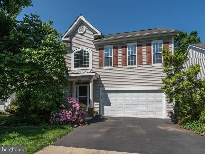 Fairfax County Single Family Home For Sale: 5864 Linden Creek Court