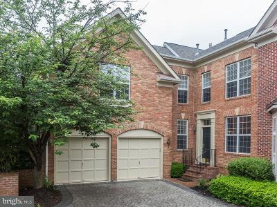 Leesburg Townhouse For Sale: 43402 Westchester Square
