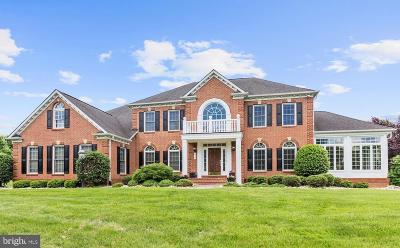 Fairfax County Single Family Home For Sale: 814 Polo Place