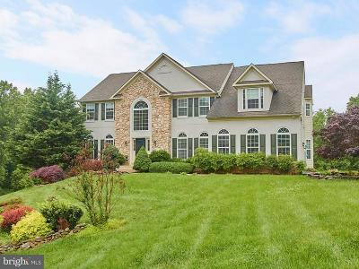 Loudoun County Single Family Home For Sale: 34900 Delia Court