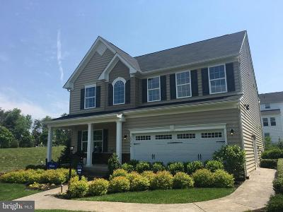 Aldie Single Family Home For Sale: 25744 Racing Sun Drive