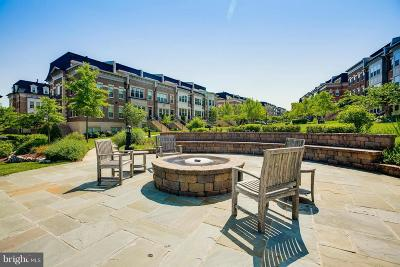 National Harbor Townhouse For Sale: 503 Rampart Way #UNIT1