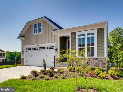 Bowie, Odenton, Upper Marlboro Single Family Home For Sale: 2727 Dragon Fly Way