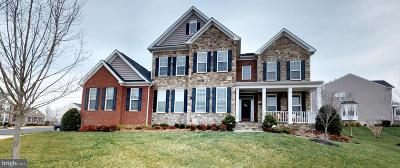 Loudoun County Single Family Home For Sale: 21492 Great Sky Place