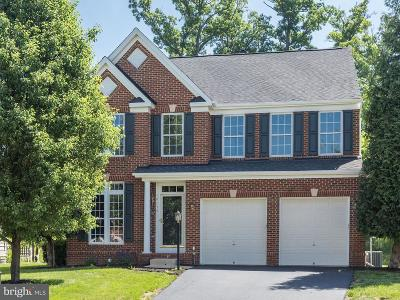 Loudoun County Single Family Home For Sale: 19258 Coton Holdings Court