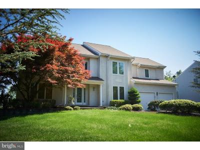 Holland Single Family Home For Sale: 79 Rocking Horse Way