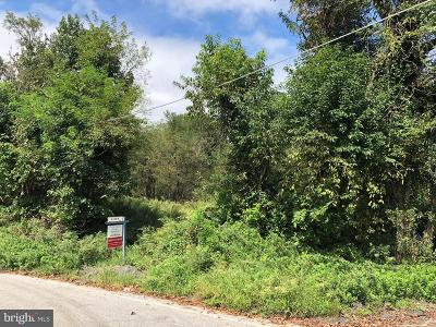 Chesapeake Beach Residential Lots & Land For Sale: 2860 Beaver Dam Road
