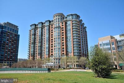 Mclean Condo For Sale: 8220 Crestwood Heights Drive #710