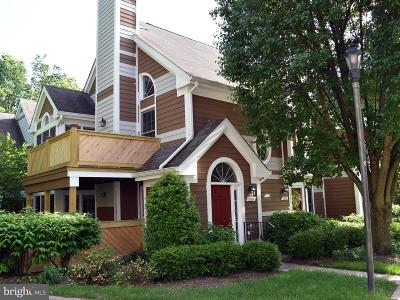 Reston Single Family Home For Sale: 1509 Church Hill Place #1509