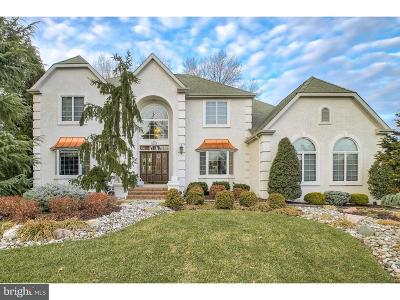 Mount Laurel Single Family Home For Sale: 100 Mountainview Road