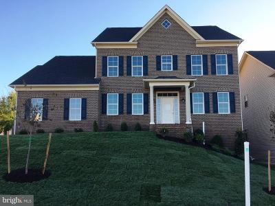 Clarksburg Single Family Home For Sale: 22007 Winding Woods Way