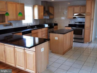 Solomons Rental For Rent: 97 Swaggers Point Road