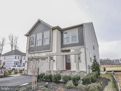 Chantilly Single Family Home For Sale: 25282 Abney Wood Drive