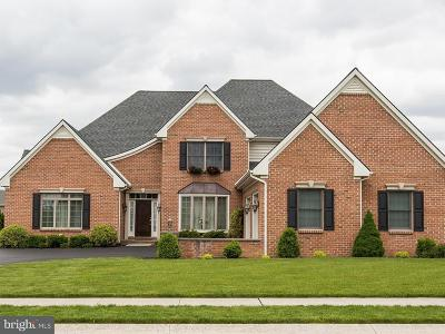Lancaster Single Family Home For Sale: 329 Greenhedge Drive