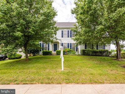 Montgomery County Single Family Home For Sale: 17830 Cricket Hill Drive