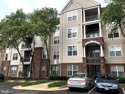 Falls Church Condo Active Under Contract: 3021 Nicosh Circle #1204