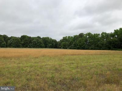 Residential Lots & Land For Sale: Lot 3 Buck Road