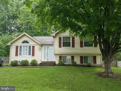 Centreville Single Family Home For Sale: 13802 Cabells Mill Drive