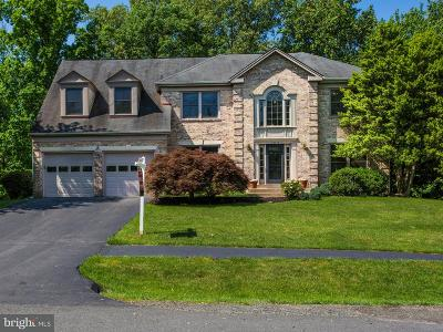 Herndon Single Family Home For Sale: 12015 Meadowville Court