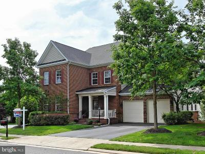 Ashburn Single Family Home For Sale: 42679 Frontier Drive