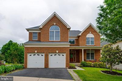 Chantilly Single Family Home For Sale: 25842 Donegal Drive