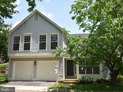Leesburg Single Family Home For Sale: 312 Deerpath Avenue SW