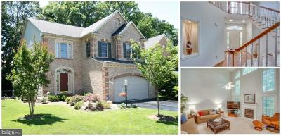 Fairfax County Single Family Home For Sale: 8587 Beatrice Court