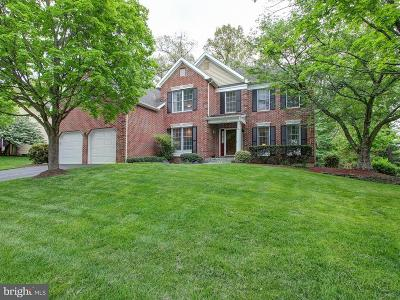 Montgomery Village Single Family Home For Sale: 19809 Helmond Way