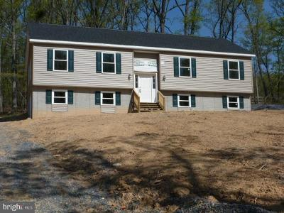 Frederick County Single Family Home For Sale: 228 Falcon Trail