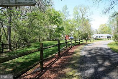 Caroline County Single Family Home For Sale: 12980 Locust Lane