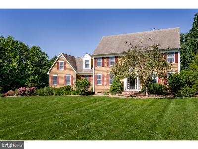 Hopewell Single Family Home For Sale: 28 Woodsville Road