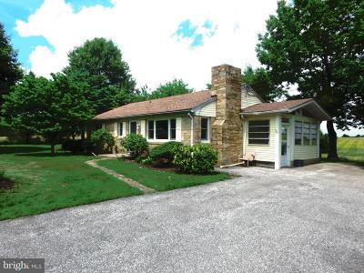 Woodbine Single Family Home For Sale: 1246 Hoods Mill Road