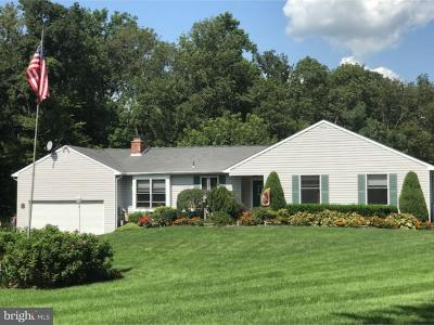Bucks County Single Family Home For Sale: 3783 Stump Road