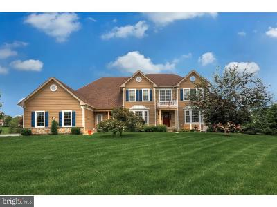 Collegeville Single Family Home For Sale: 24 Federal Court