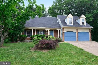 Loudoun County Single Family Home For Sale: 24 Griswold Court
