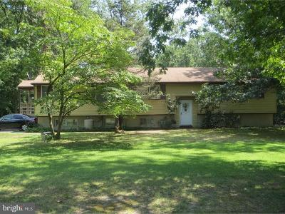 Franklinville Single Family Home For Sale: 1852 Williamstown Road