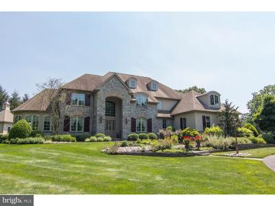Bucks County Single Family Home For Sale: 3372 Indian Spring Road