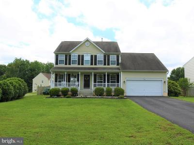 Spotsylvania Single Family Home For Sale: 6223 Salisbury Drive