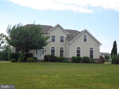 Swedesboro Single Family Home For Sale: 223 Jockey Hollow Run