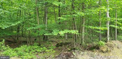 Dillsburg Residential Lots & Land For Sale: Chain Saw Road