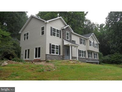 Doylestown Single Family Home For Sale: 2795 Street Road