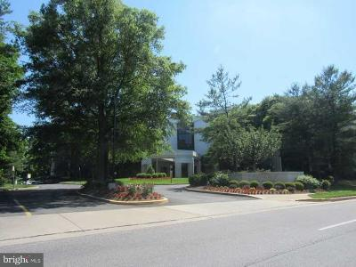 Pikesville Single Family Home For Sale: 4001 Old Court Road #409