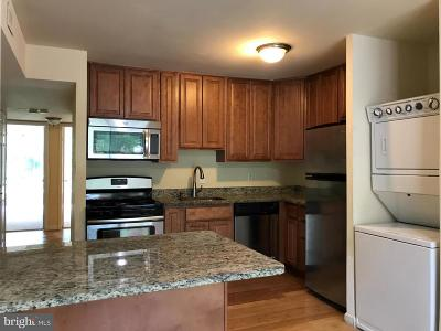 Greenbelt Rental For Rent: 8489 Greenbelt Road #1