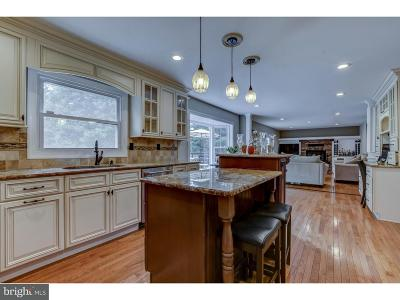 Princeton Junction Single Family Home For Sale: 20 Davenport Drive